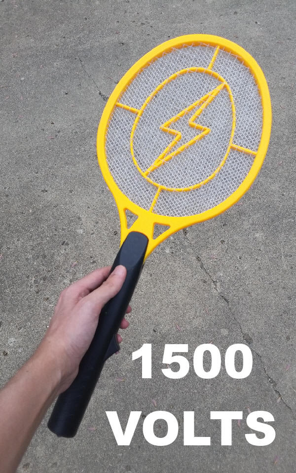 Electric Fly Swatter